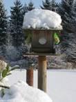 image mangeoire en bois couverte neige