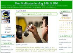 image-capture-ecran-site-mon-mulhouse-fond-blanc-bord-vert