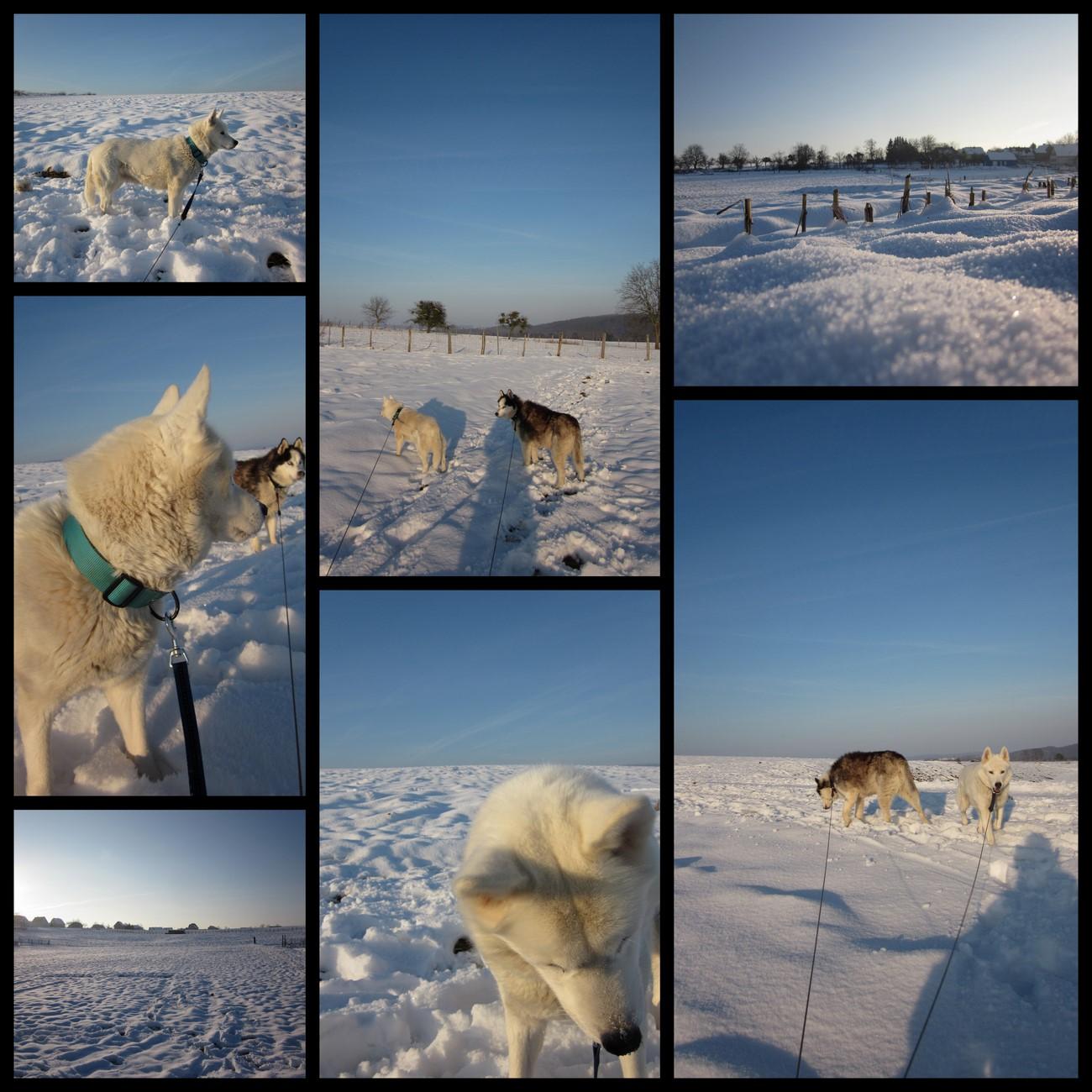 Neige, neige, neige...