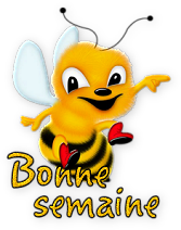 Message destiné à TOUS LES NOUVEAUX MEMBRES - Page 2 Creachou_Blinkie_1402