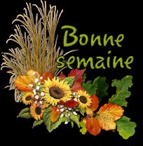 LE REGLEMENT DU FORUM - Avenant n°1 - Page 5 Creachou_Blinkie_1415