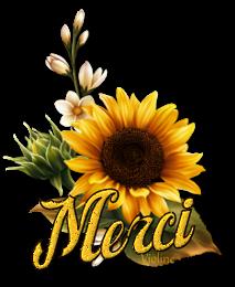 Message destiné à TOUS LES NOUVEAUX MEMBRES - Page 22 Creachou_Blinkie_1727