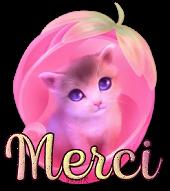 Message destiné à TOUS LES NOUVEAUX MEMBRES - Page 21 Creachou_Blinkie_2016