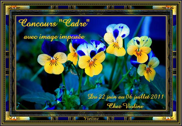 Chez Violine - Forum de Loisirs et Créations Graphiques - Page 7 ConcoursCadre220611Creachoub
