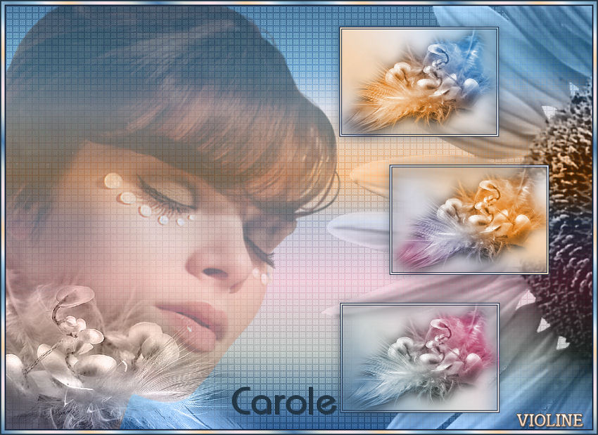 https://s3.archive-host.com/membres/up/502828651/CoursPsp/Blend/Creachou260218_Carole.jpg