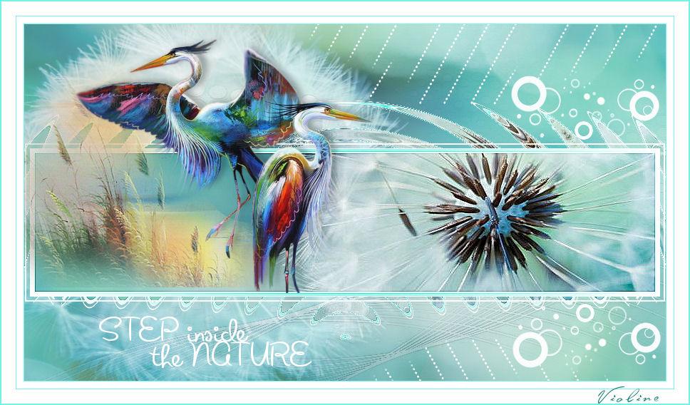 The nature Creachou030221_The_nature