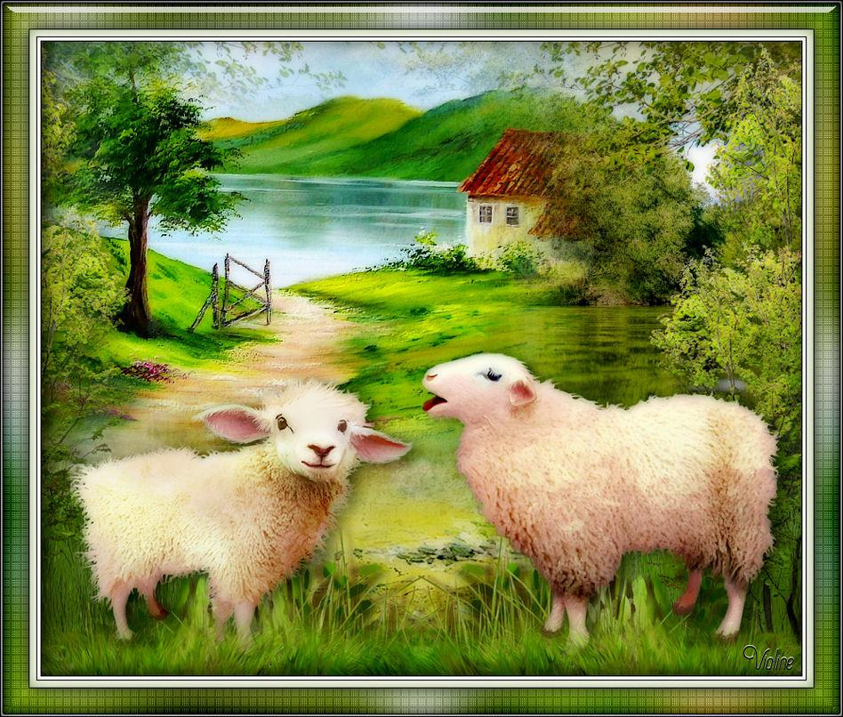 MES CREATIONS à mettre sur Monde Graphisme Creachou050520_Challenge_Fairy_Moutons