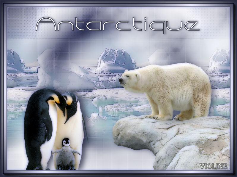 https://s3.archive-host.com/membres/up/502828651/MesCreations/Creachou100218_Antarctique.jpg