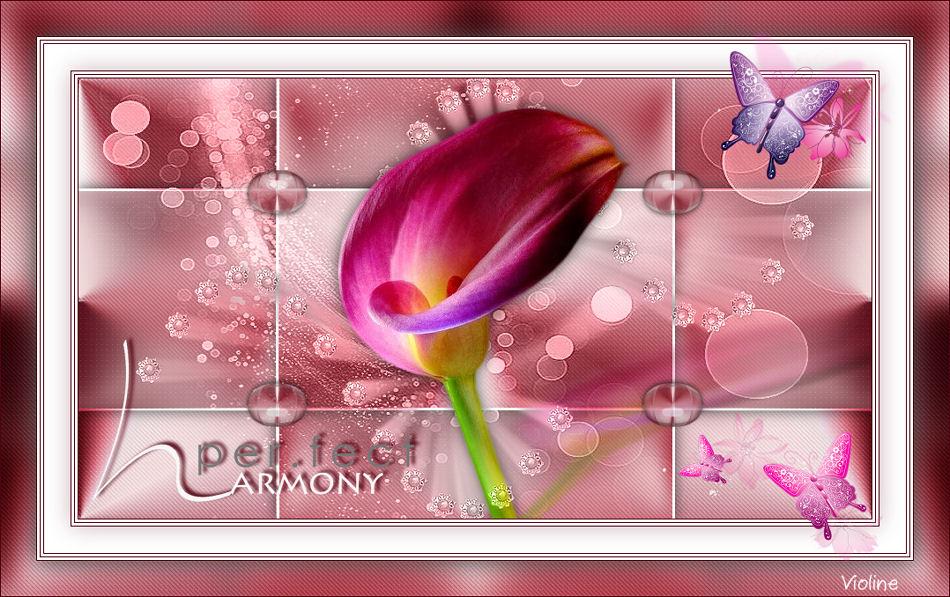 Perfect Harmony Creachou281120_Perfect_harmony1