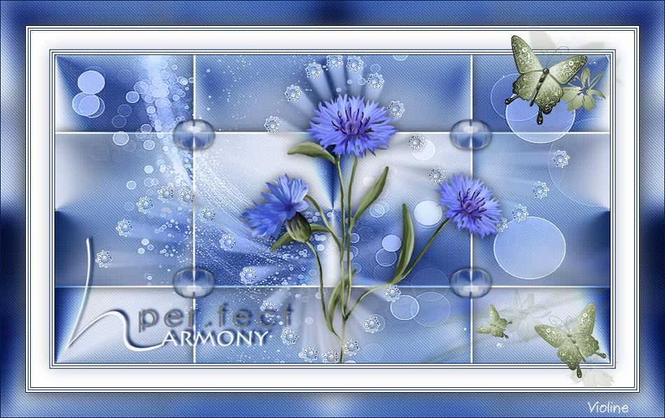 Perfect Harmony Creachou281120_Perfect_harmony2